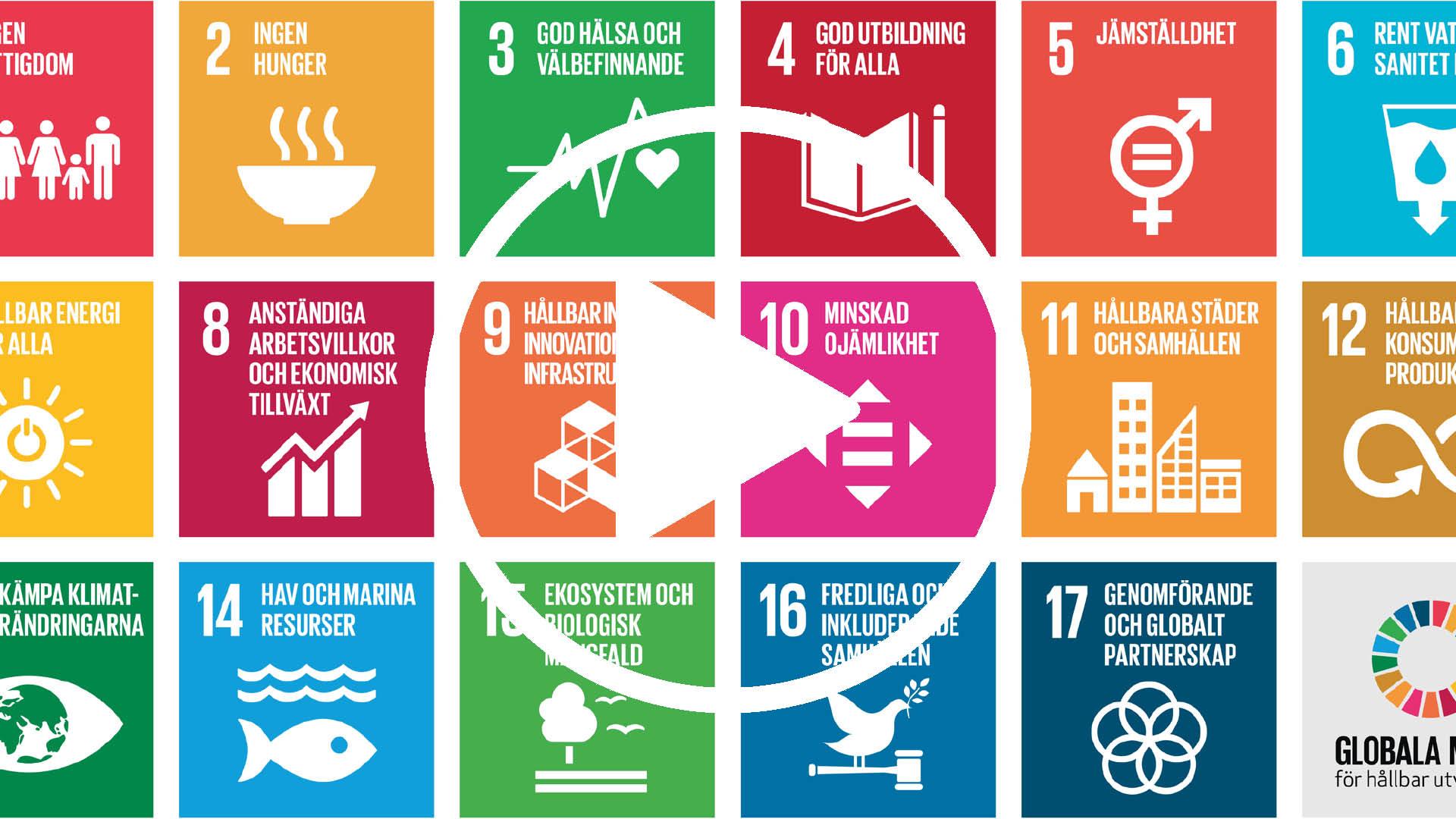 Rafikis kortfilmer om de globala målen